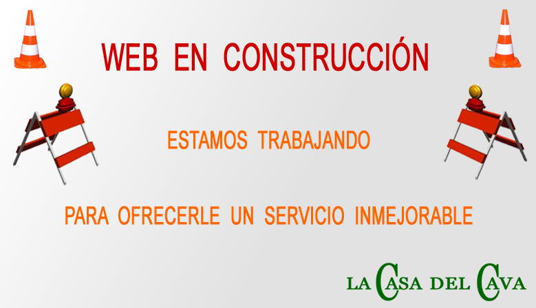 web construccion